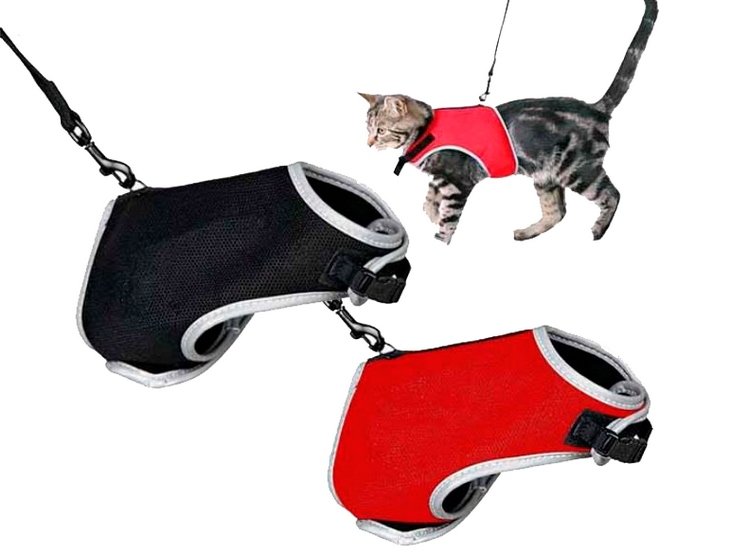 Как надеть шлейку на кошку: в картинках
