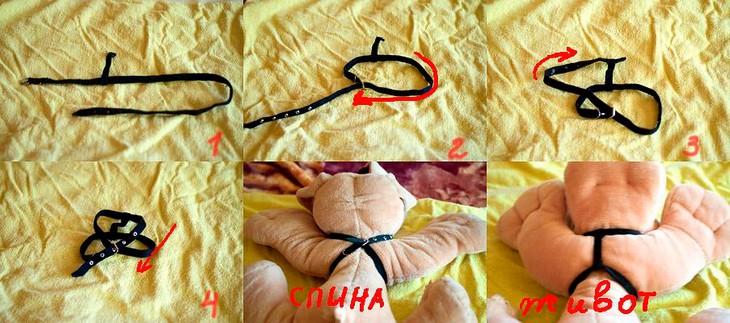 Шлейка для кошки: инструкция, фото